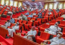 Southern senators back governors on prohibition of open grazing