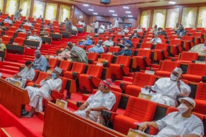 Senate Southern senators back governors on prohibition of open grazing Institute for Border Studies 112