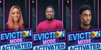 BBNaija Evicted housemates