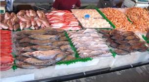وزارة الفلاحة والصيد البحري تتوصل بتقرير أسود عن أسباب ارتفاع أثمنة الأسماك