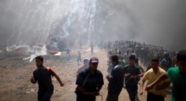55 قتيلا و 2771 جريحا في الذكرى السبعين لنكبة فلسطين