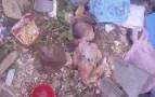 العثور على جثة رضيع وسط القمامة