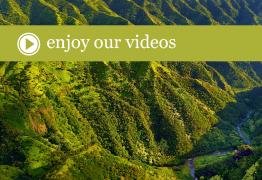 CA_video