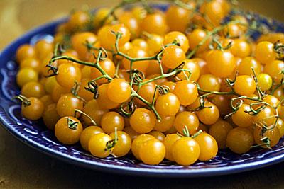 currant-tomato_1S.jpg