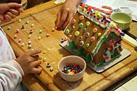 ginger_house_20S.jpg