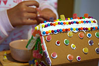 ginger_house_23S.jpg