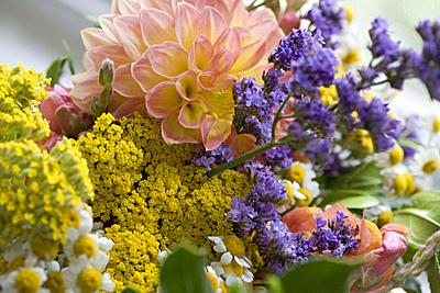 moresatflowers_01S.jpg