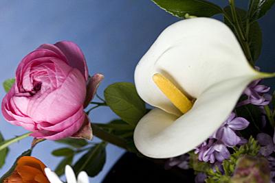 bouquet-azul_2S.jpg