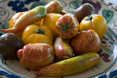 tomates-lindos_1S.jpg