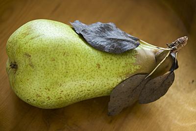 fetel-pear1S.jpg