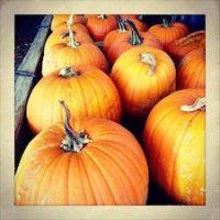 outro outubro