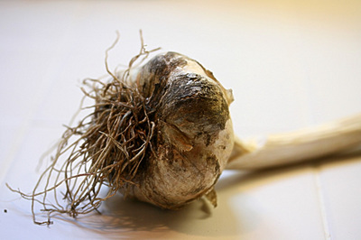 garlic_lovehate_3s.jpg