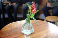 greens_restaurant_8.jpg