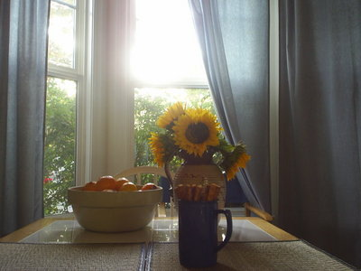 kitchenwindowafternoon.JPG