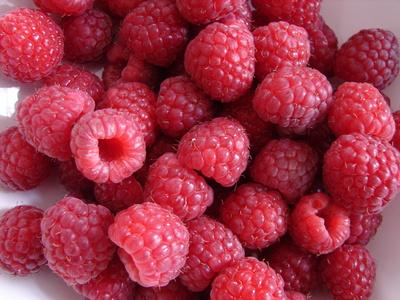 myfavoriteberries.JPG