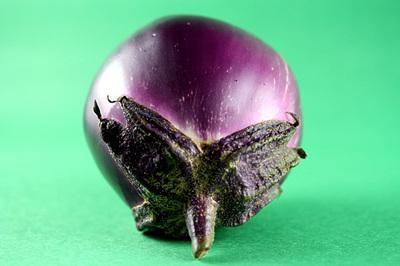 the_purple_thing_2S.jpg