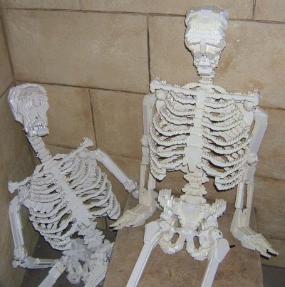 Lego skeletons are cool