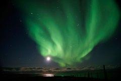 arctic-safari-aurora