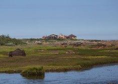 L-Tambosso-BBB-Landscape
