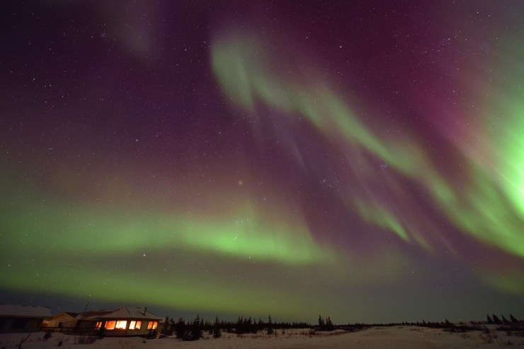Northern lights over Nanuk Polar Bear Lodge. Ian Johnson photo.