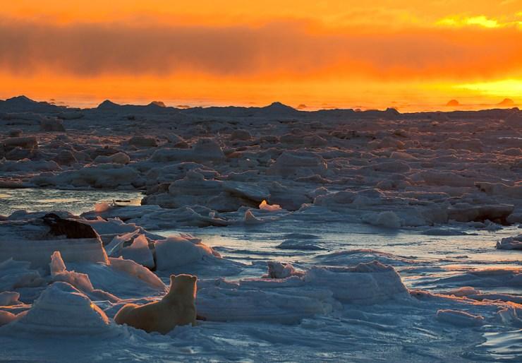 Hudson Bay sunset. T. Thompson photo.