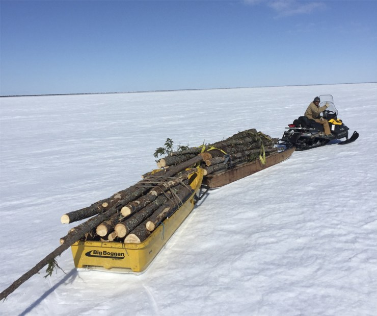 Hauling wood on Hudson Bay. Thumbs up for the boggans!