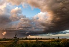 1st Place Landscape - Ann Fulcher
