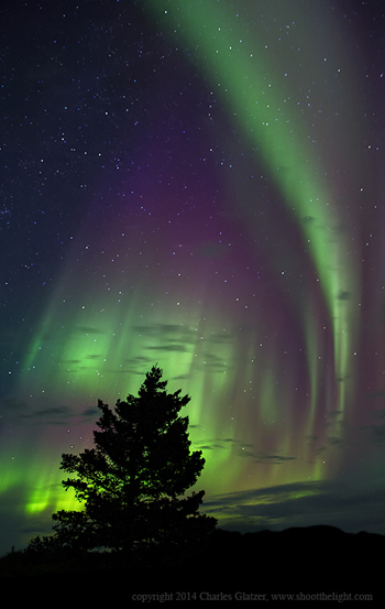 Northern lights at Nanuk Polar Bear Lodge.