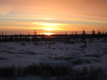 Sunset on white. Great Ice Bear Adventure. Dymond Lake Ecolodge. Margaret Brandes photo.