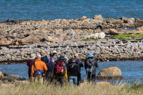polar-bear-tour-churchill-wild-seal-river-heritage-lodge-henrik-egede-lassen