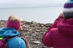 polar-bear-tour-churchill-wild-seal-river-heritage-lodge-chris-murphy
