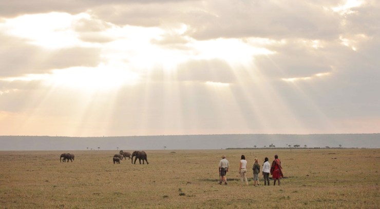 Walking safari at Elephant Pepper Camp in Kenya