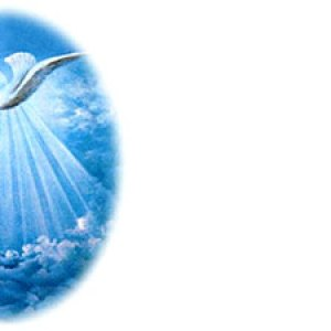 Holy Spirit Dove V5 Christian Worship Background. High quality worship images for use to spread the Gospel and enhance the worship experience.