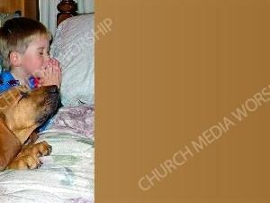 Bloodhound Praying tan Christian Background Images HD