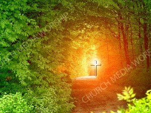 Jesus in Nature V39 Christian Worship Image. High quality worship images for use to spread the Gospel and enhance the worship experience.