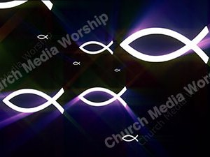 Fish Purple Christian Worship Loop Video Perfectly timed for no glitches in 1080P HD. Room for lyrics