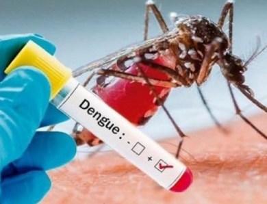Desde la Gobernación de Central le declaran la 'Guerra al Dengue'