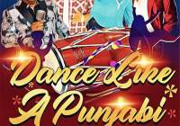 Dance Like A Punjabi Gt Band