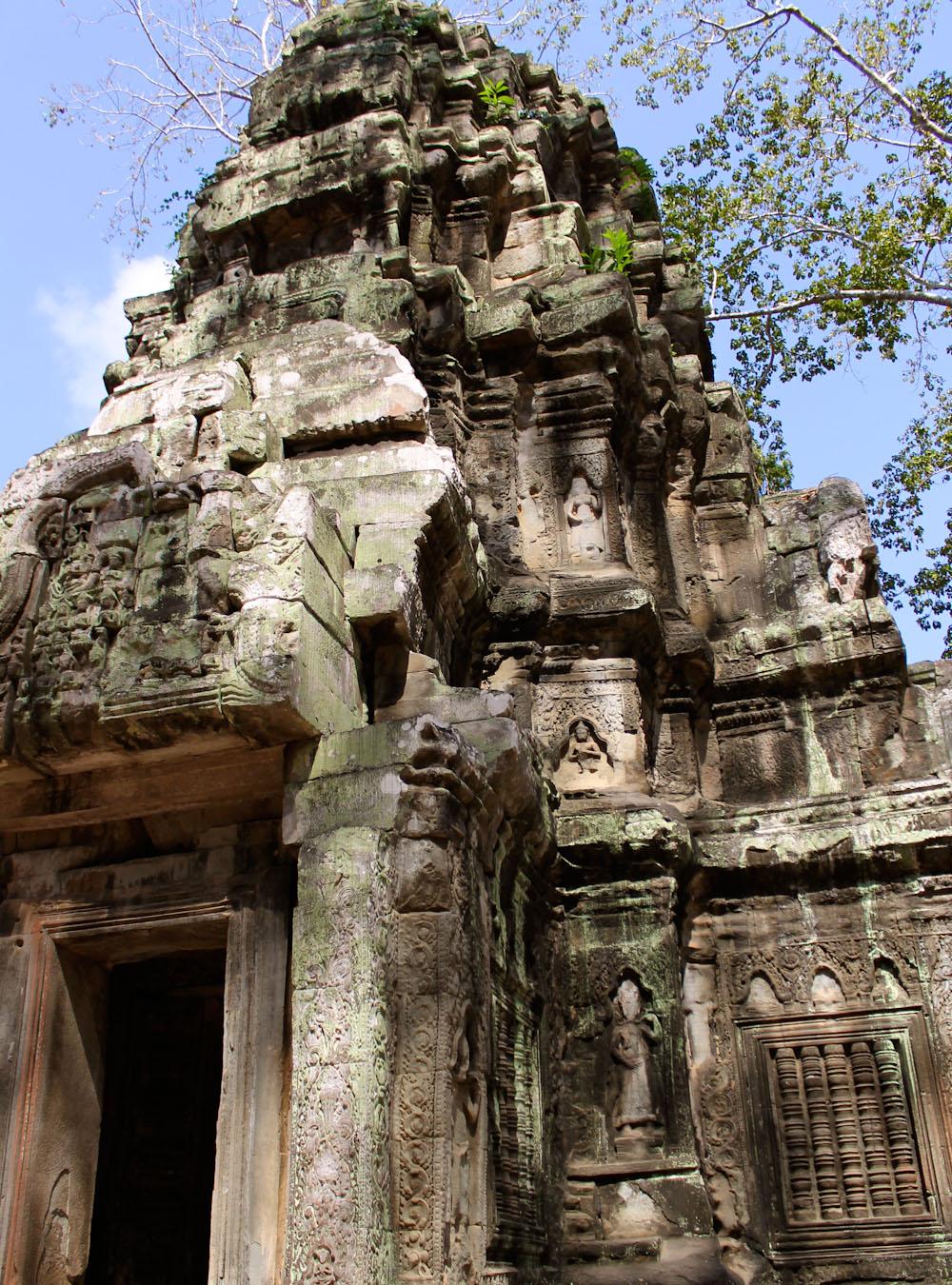 Ta Prohm Siem Reap Cambodia-17