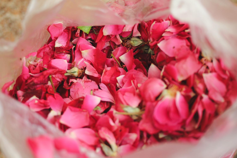 Flower Rangoli Making Diwali Chuzai Living