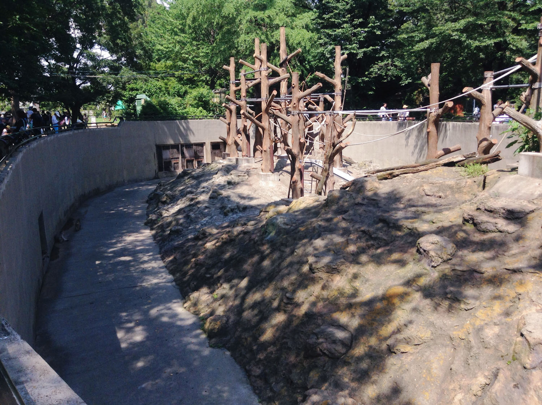 Inokashira Park Zoo-20