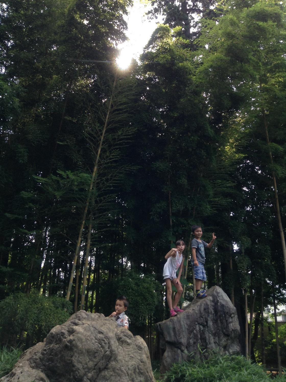 Inokashira Park Zoo-49