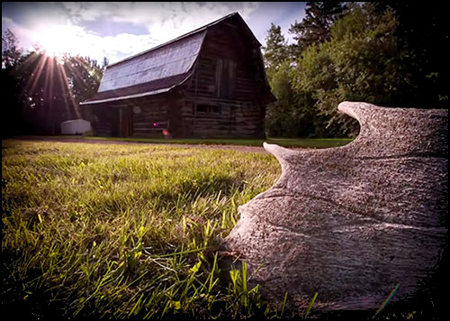 The Slave Lake Region – Northshore Bison Homestead
