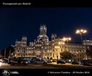 D8A_9737_bis_Madrid
