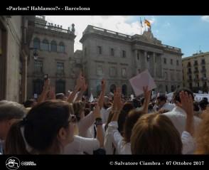 D8B_7588_bis_Manifestazione_Barcelona