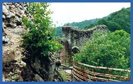 Fortezza Poienari