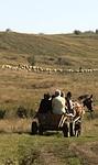 Transilvania a cavallo