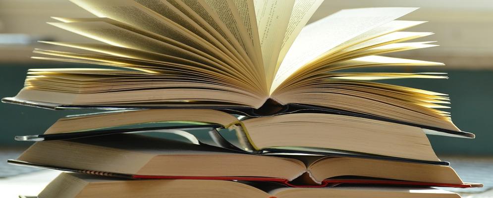 """Locri, nasce """"Lo Scaffale del libro condiviso"""""""