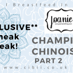Joanie AW Chinoserie Collection (3)