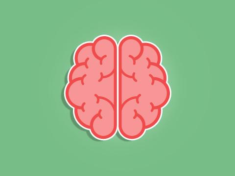 e-learning-plongee-niveau-4-cerveau